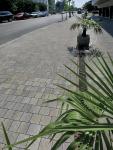 _Strada romane mosaico-web